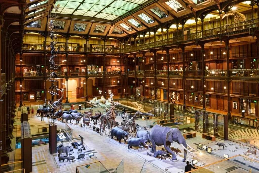 Grande Gallerie de l'Evolution