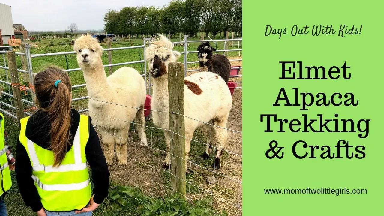 elmet alpacas review
