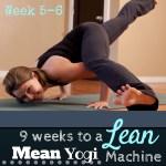 9 Weeks to a Lean Mean Yogi Machine (Week 5-6)