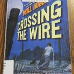 Crossing the Wire by Will Hobbs: A Book Review