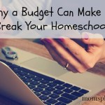 Why a Budget Can Make or Break Your Homeschool