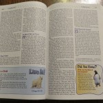 NIV Adventure Bible Polar Expedition: A Review and Giveaway