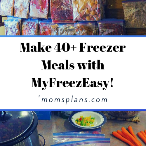 How I Made 40+ Meals with MyFreezEasy