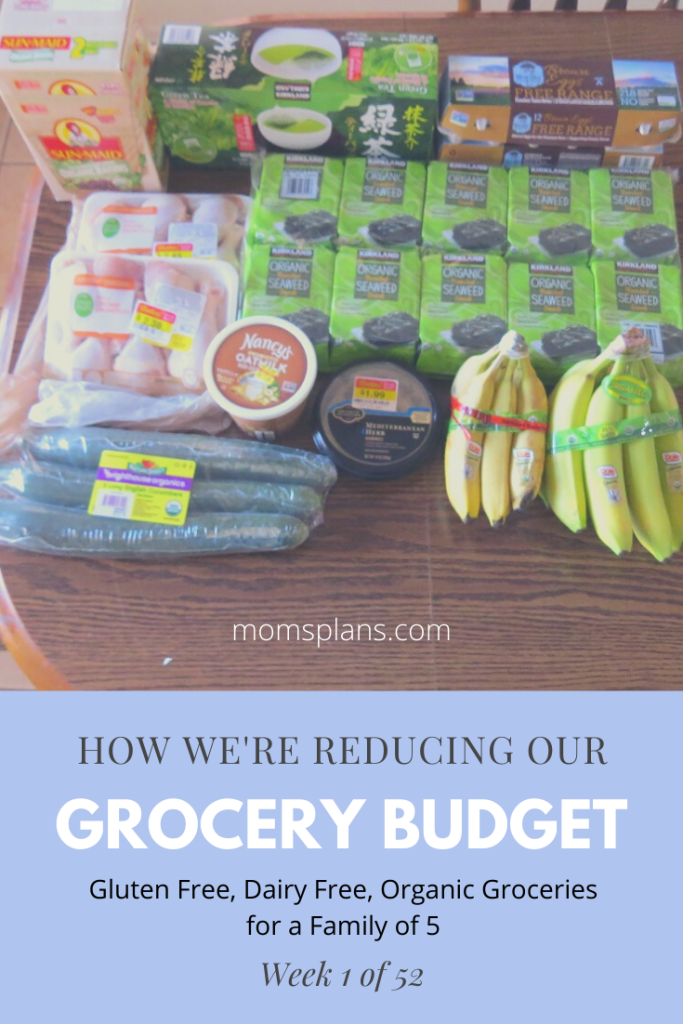 Lower Our Grocery Bill