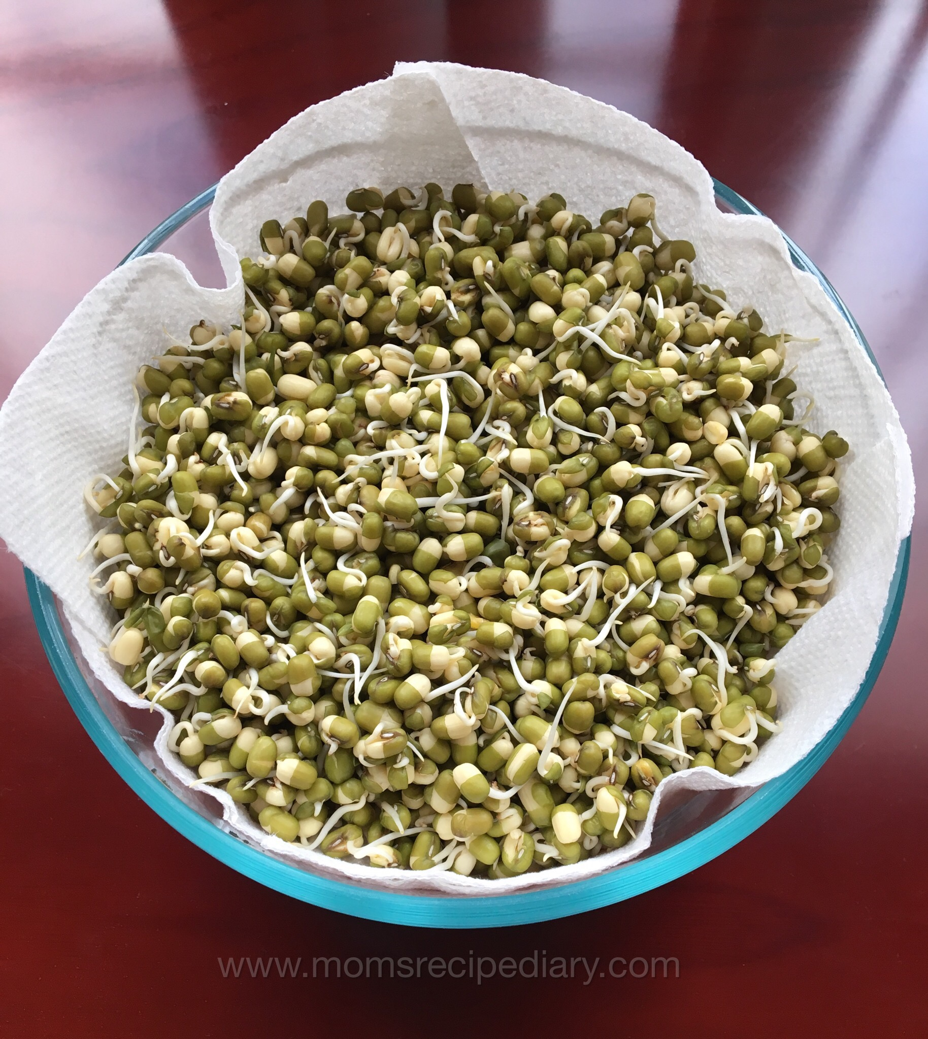 How to sprout beans – Instant Pot Method