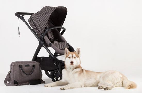 cosmopolitan-geo-stroller17