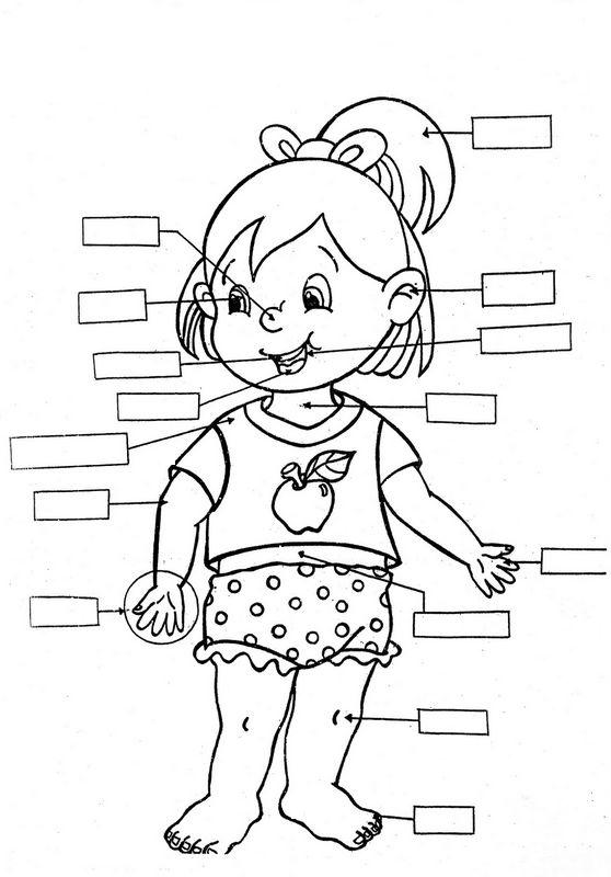 Coloriage de Pour enseignants, dessin Trouver les parties