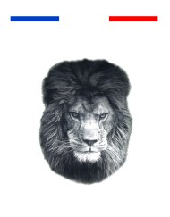tatouage tete de lion realiste