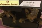 Lightseekers - Prototype Figure Unboxing