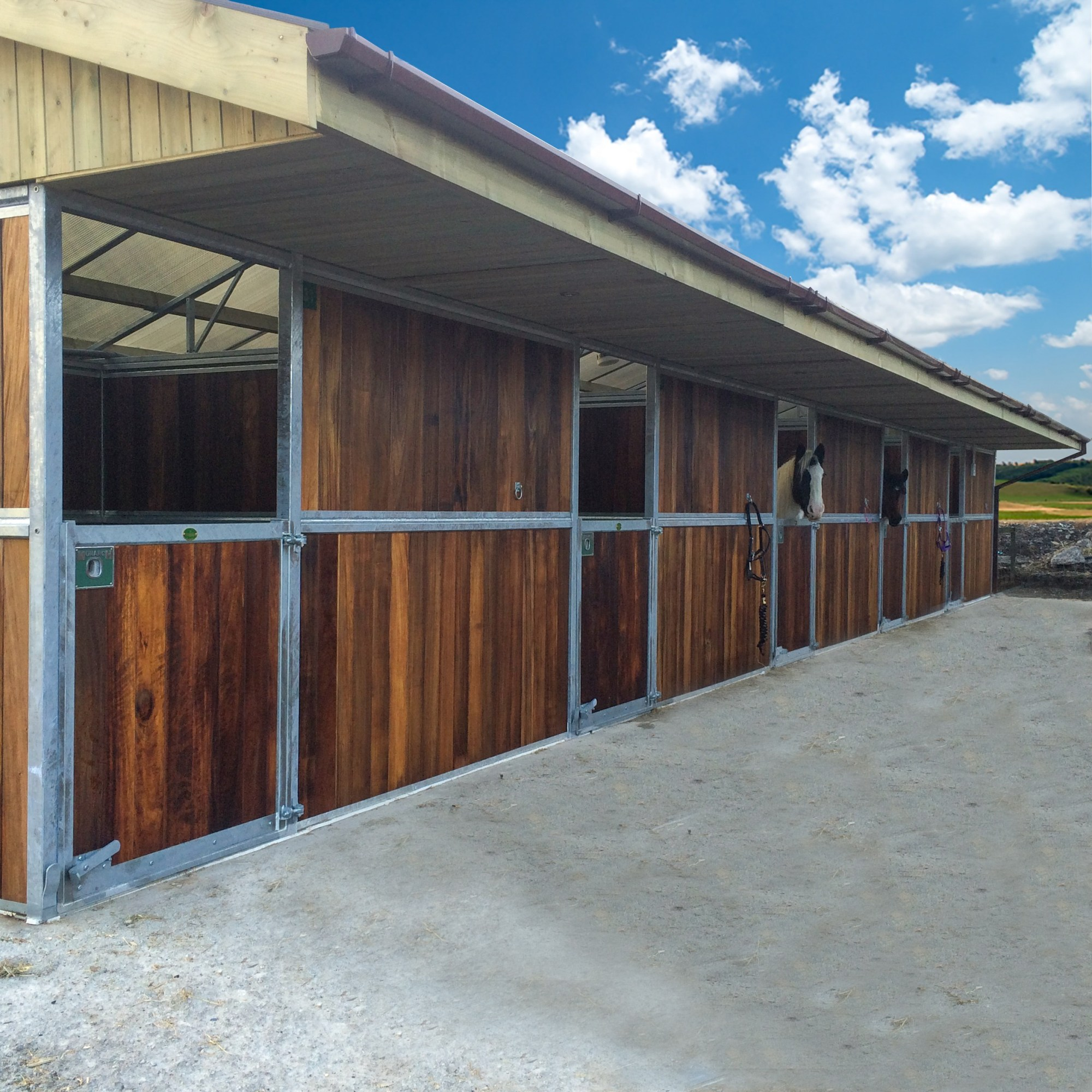Monarch Back-to-back horse barn by Monarch equestrian