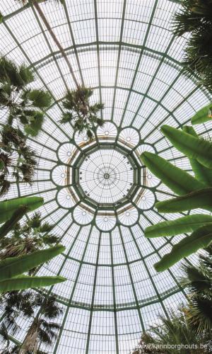 Royal Greenhouses in Laeken  The Belgian Monarchy