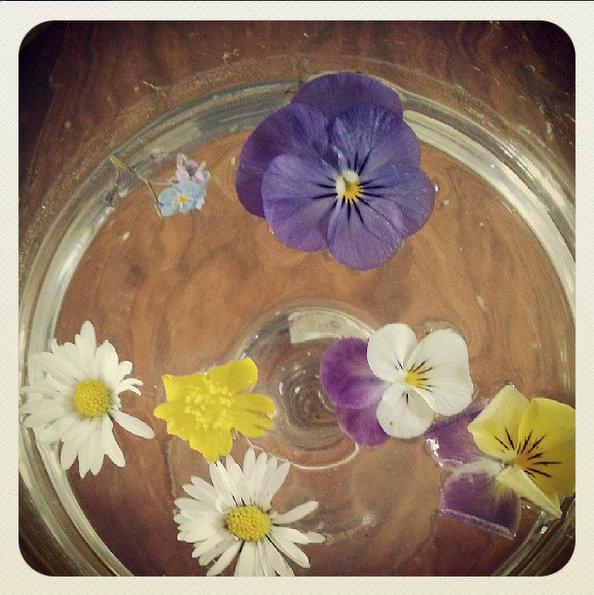 fleurs-coupees