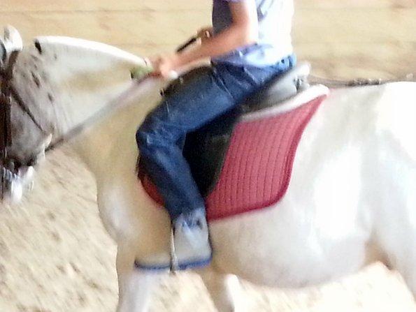 pantalon-indestructible-cheval