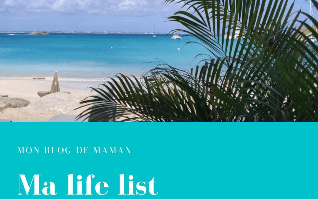 Life list : ma liste des 35 choses à faire avant de mourir…