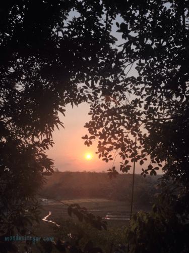 Kesasar Membawa Nikmat, Kolak Duren di Tengah Hutan Jati - Berbagi