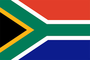 South African insurance