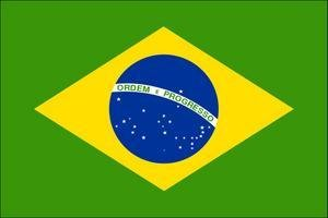 assurance-bresil-drapeau
