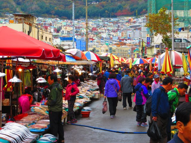 what to do in South Korea