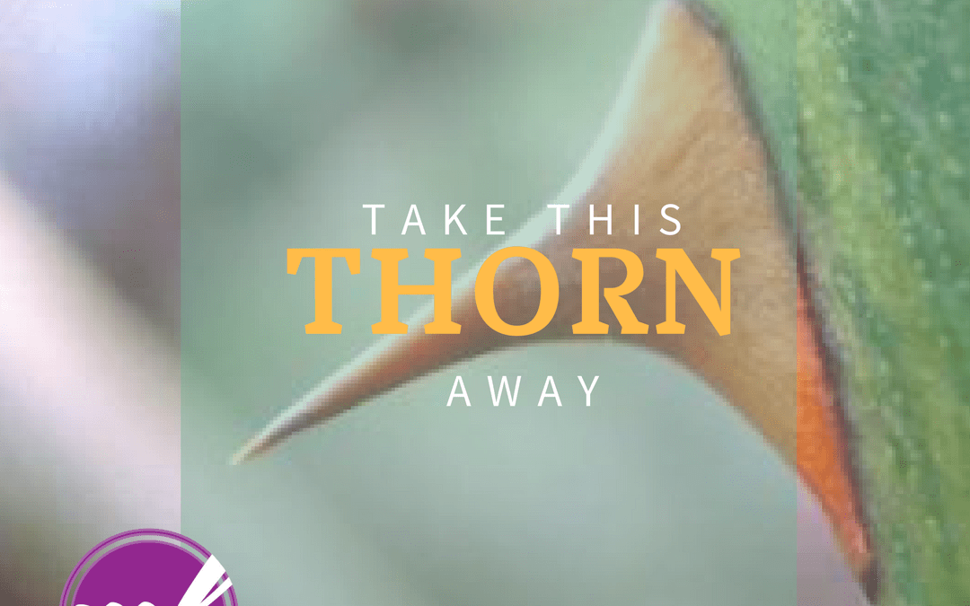 God Will Never Take Your Thorn Away But You Will Overcome