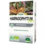 Harpagophytum procumbens 20 ampoules Biotechnie
