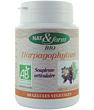 Harpagophytum 80 gélules Nat et Form