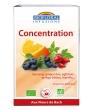 Infusion Elixir Force Vitalité Energie Biofloral