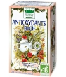 Tisane Antioxydants bio 20 sachets Romon Nature