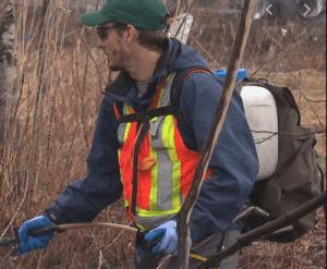 Québec – Contrat juteux octroyé à une entreprise de destruction de notre biodiversité