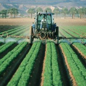 Le Sommet des Nations unies sur les systèmes alimentaires: à l'ombre des lobbies de l'agrobusiness ?