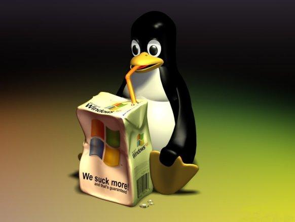 Penguin-Windows XP- GNU/Linux