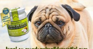olio di cocco per cani