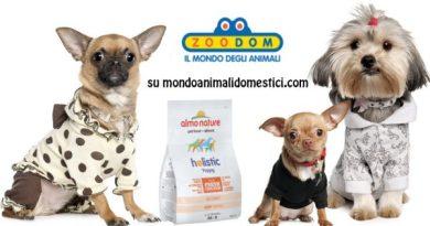 cibo per cani mondoanimalidomestici