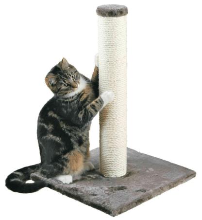 migliori tiragraffi gatto