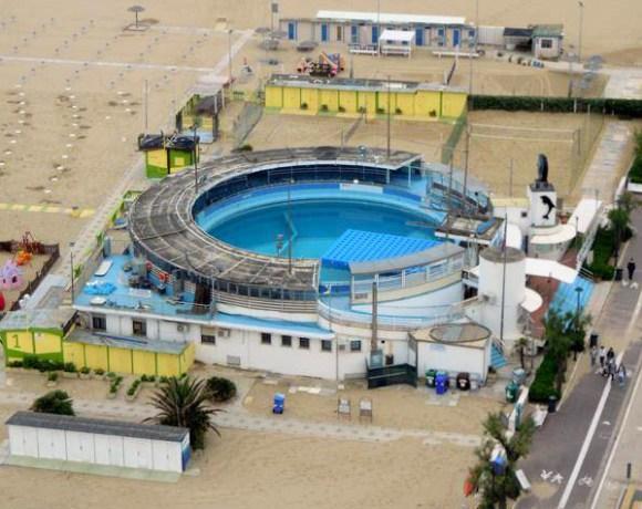 bando delfinario rimini