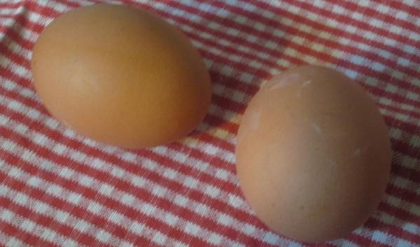 pasqua decorare uova