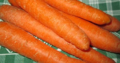 carote carote aiutano a perdere peso
