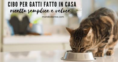 Cibo per gatti fatto in casa, ricetta semplice e veloce