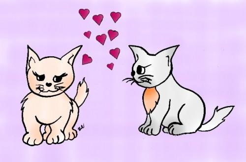 San valentino per bambini disegna gatti innamorati