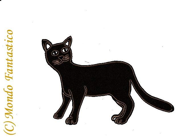 Gatto nero una favola mondo fantastico