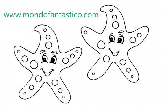 le 5 differenze la stella marina