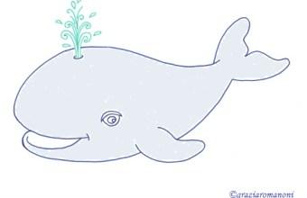 Disegni per bambini, animali: la balena