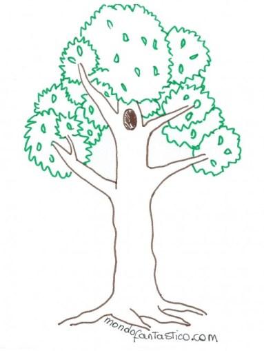 albero piante