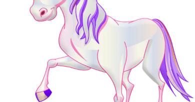 Unicorni da colorare, animali magici e leggendari