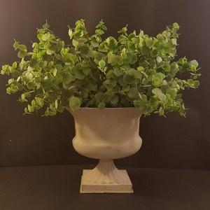 vaso con foglie verdi