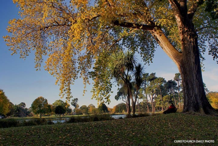 One of my favourite parks in the world. Hagley Park, Christchurch. Image courtesy of Christchurch Daily Photo.