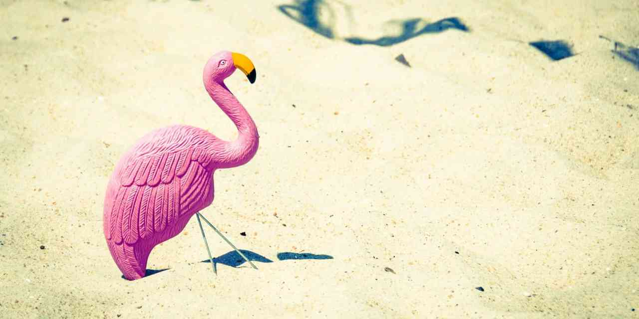 What the Flock is Flamingo FI? – Part 1