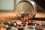 Exposed – The Money Flamingo Household's 2020 spending!