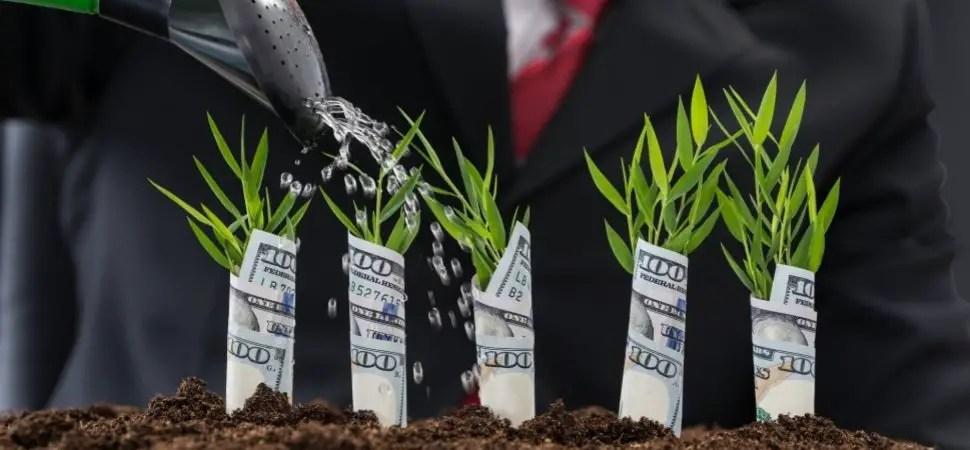 Raise Fund Startup Business