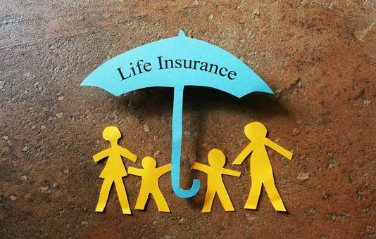 The Two Basic Types of Life Insurance Explained (2017 update)