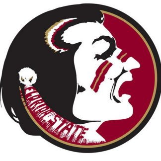 Florida State Seminoles College Logo Game Room Accessories